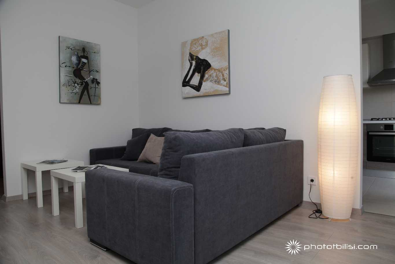Apartment-for-rent-Tbilisi-M2-IMG_1062